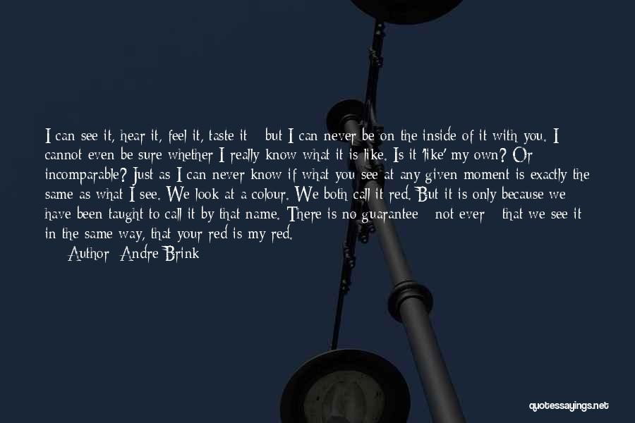 At Any Given Moment Quotes By Andre Brink