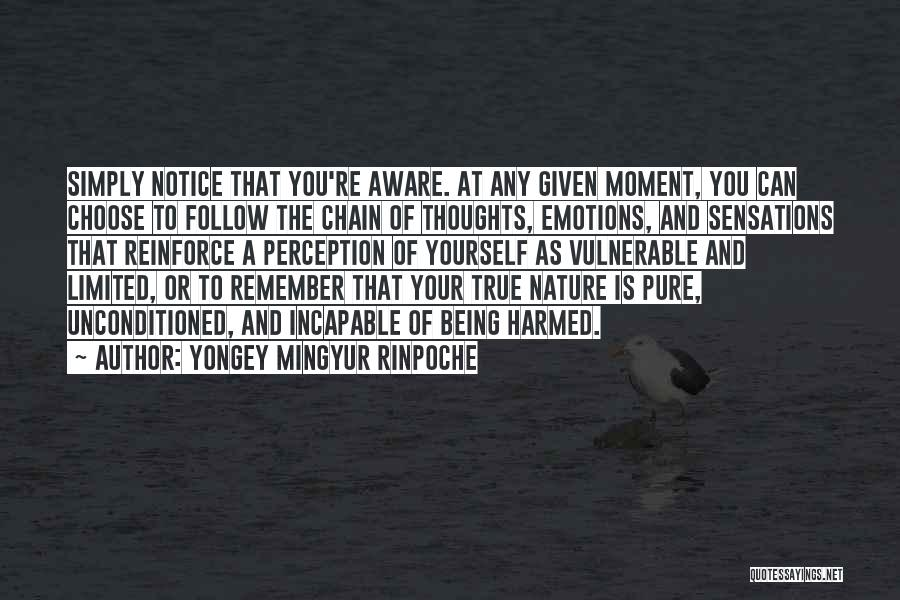 At Any Given Moment Quotes By Yongey Mingyur Rinpoche