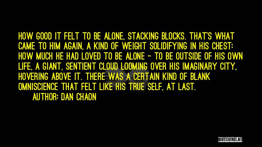 At Last Alone Quotes By Dan Chaon