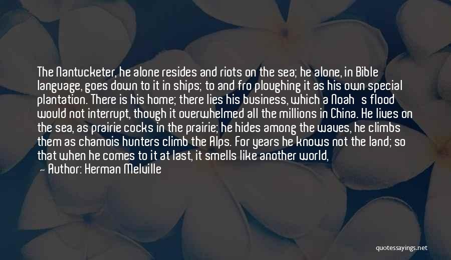 At Last Alone Quotes By Herman Melville