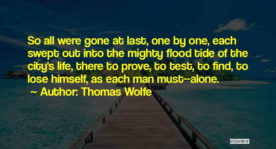 At Last Alone Quotes By Thomas Wolfe