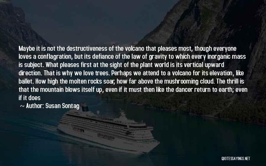 Attend Mass Quotes By Susan Sontag