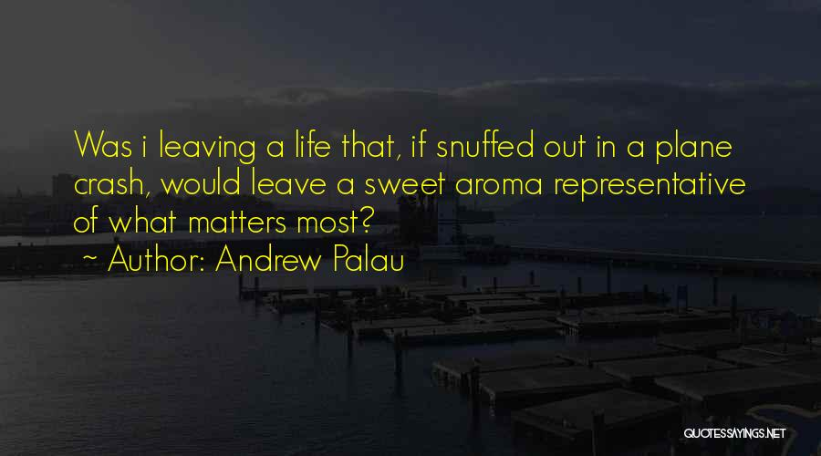 Attitude Is All That Matters Quotes By Andrew Palau