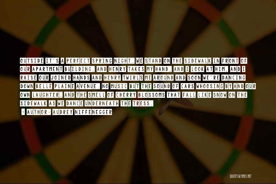 Audrey Niffenegger Quotes 1074002
