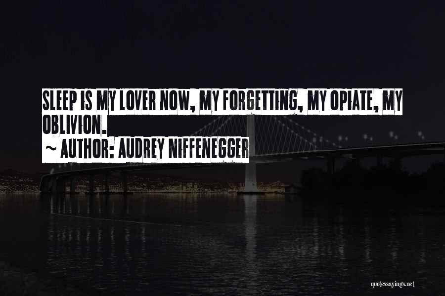 Audrey Niffenegger Quotes 1612532