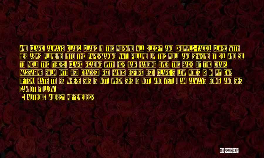 Audrey Niffenegger Quotes 1844943