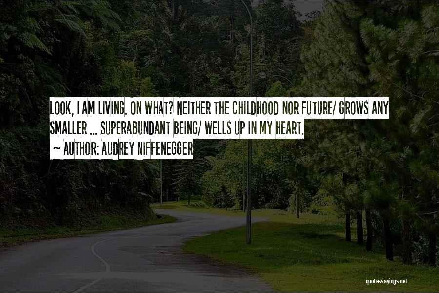 Audrey Niffenegger Quotes 976402