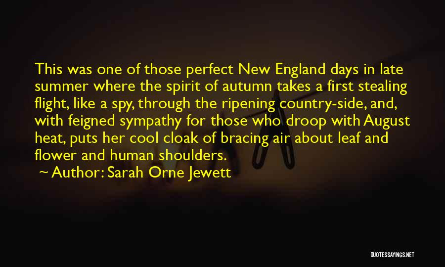 August Heat Quotes By Sarah Orne Jewett