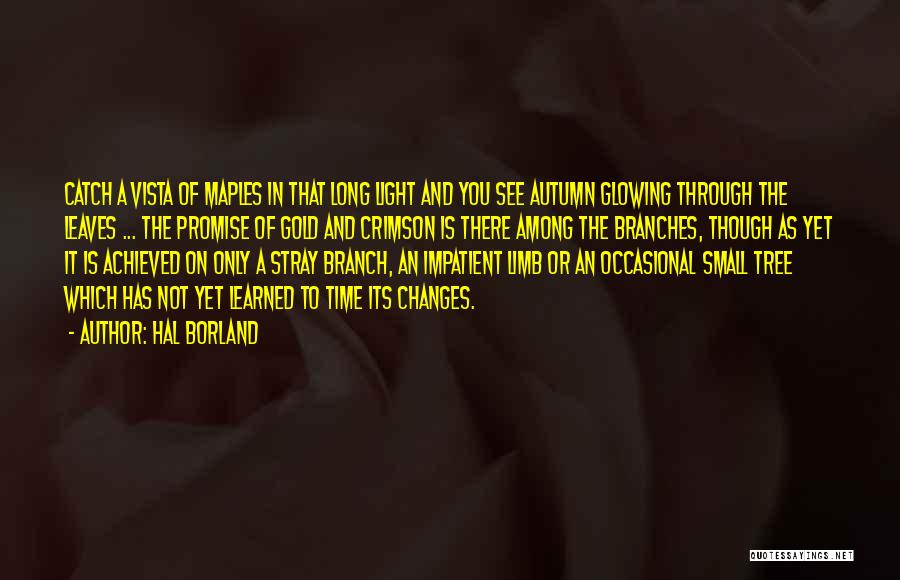 Autumn Leaves Quotes By Hal Borland