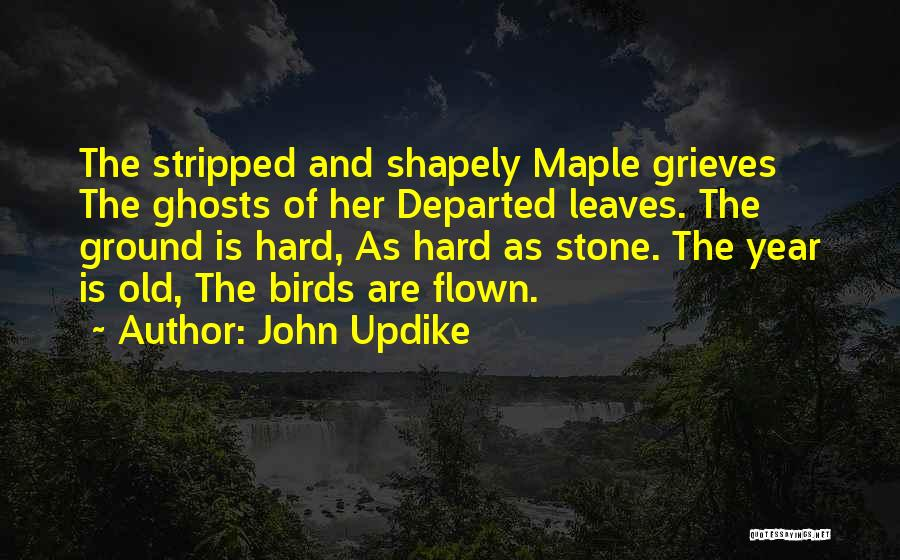 Autumn Leaves Quotes By John Updike