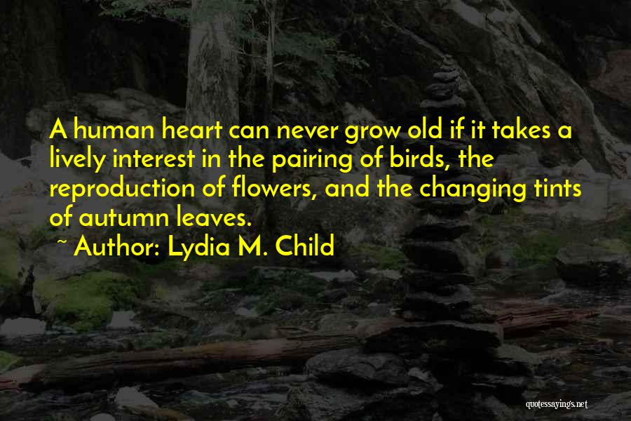 Autumn Leaves Quotes By Lydia M. Child