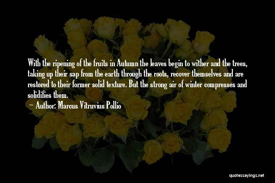 Autumn Leaves Quotes By Marcus Vitruvius Pollio