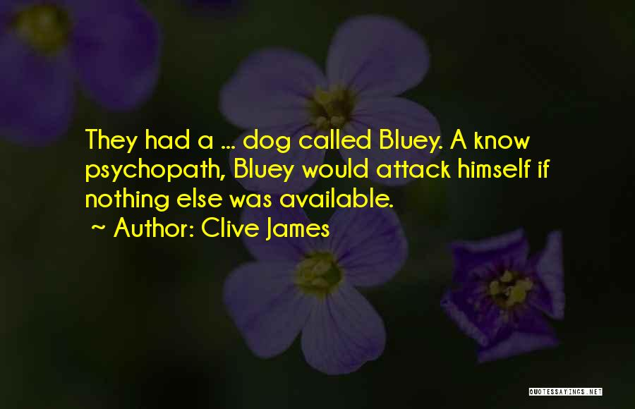 Available Funny Quotes By Clive James