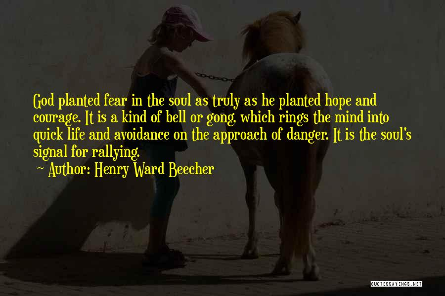 Avoidance Quotes By Henry Ward Beecher