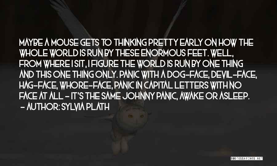 Awake Early Quotes By Sylvia Plath