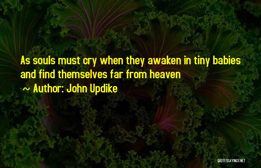 Babies Going To Heaven Quotes By John Updike