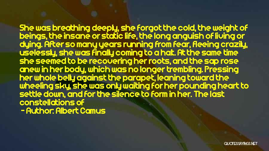 Back After A Long Time Quotes By Albert Camus