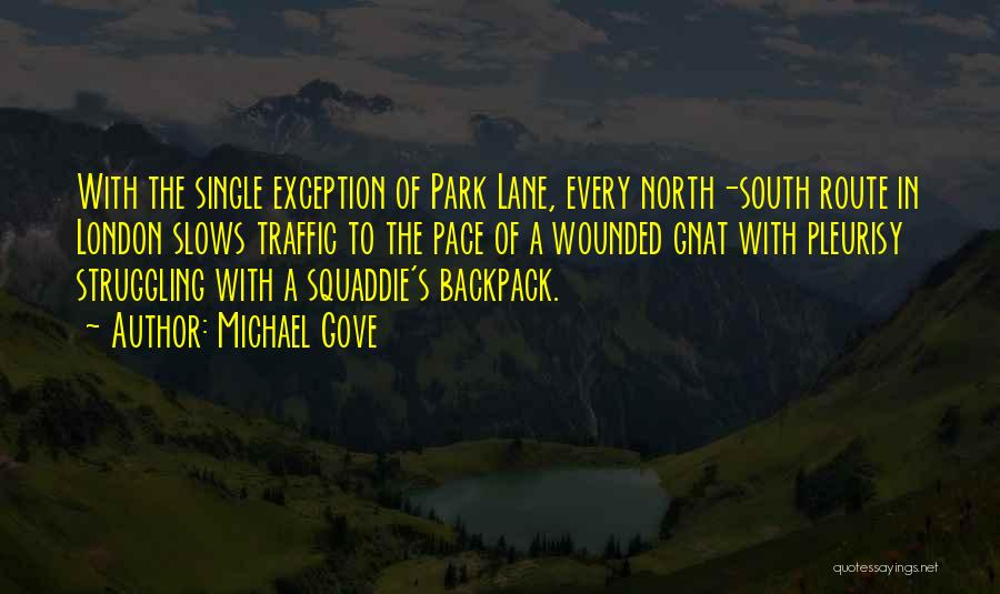 Backpack Quotes By Michael Gove
