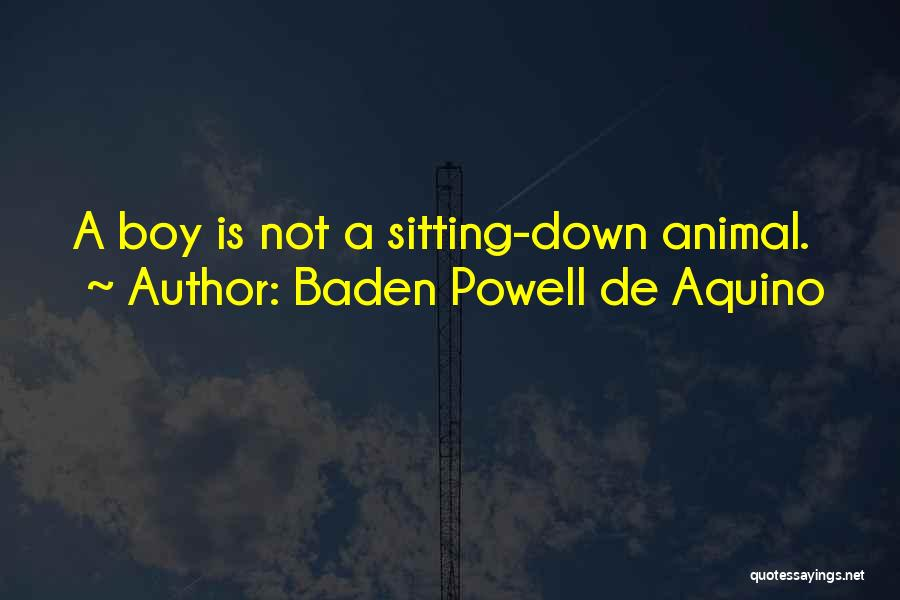 Baden Powell De Aquino Quotes 654738