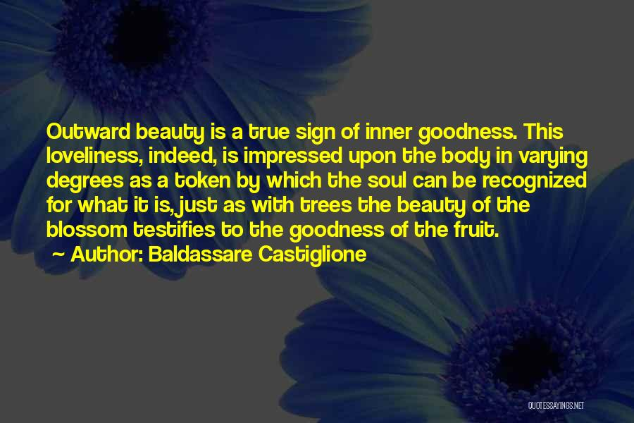 Baldassare Castiglione Quotes 1719349