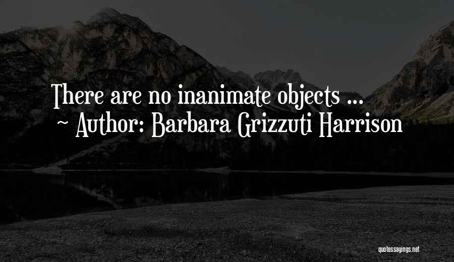 Barbara Grizzuti Harrison Quotes 87027