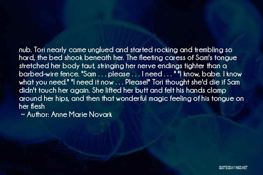 Barbed Wire Fence Quotes By Anne Marie Novark