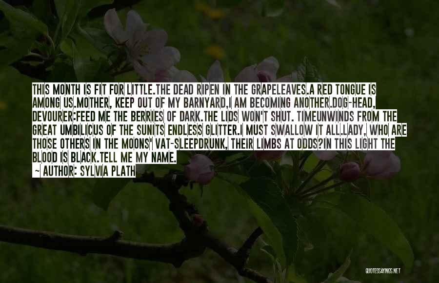 Barnyard Dog Quotes By Sylvia Plath