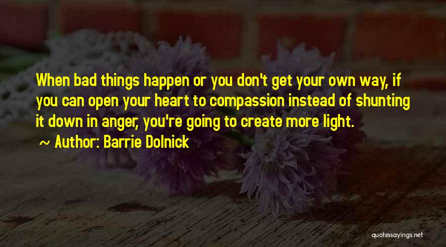 Barrie Dolnick Quotes 191100