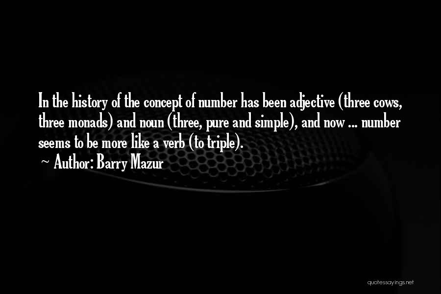 Barry Quotes By Barry Mazur