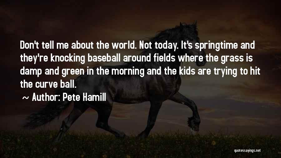 Baseball Fields Quotes By Pete Hamill