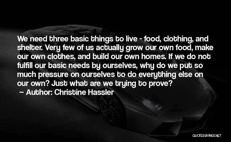 Basic Needs Quotes By Christine Hassler