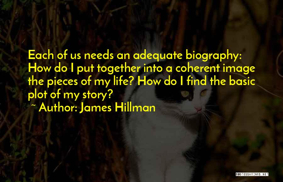 Basic Needs Quotes By James Hillman