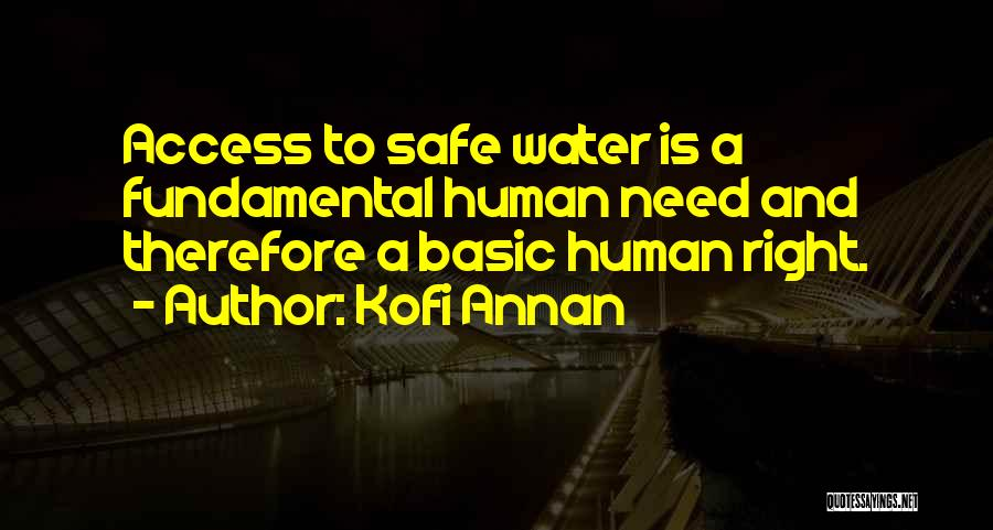 Basic Needs Quotes By Kofi Annan
