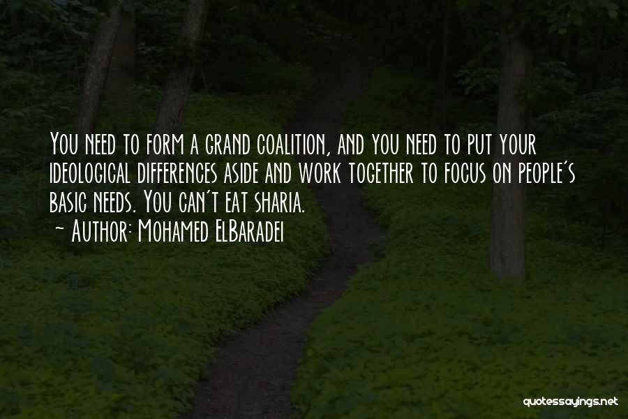 Basic Needs Quotes By Mohamed ElBaradei