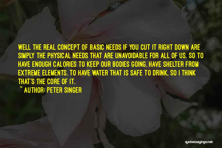 Basic Needs Quotes By Peter Singer