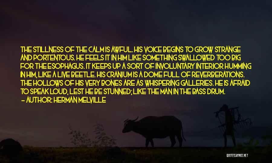 Bass Drum Quotes By Herman Melville