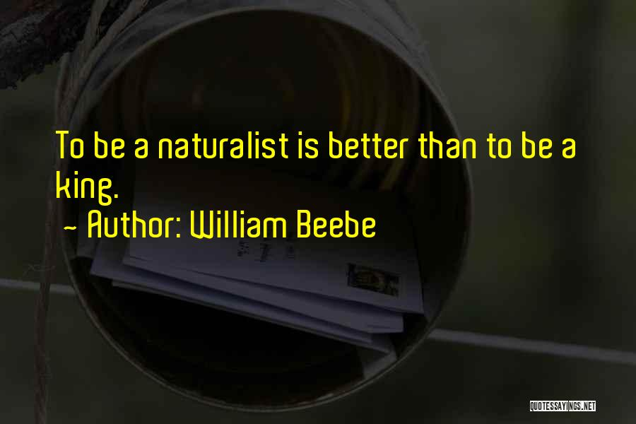 Be A King Quotes By William Beebe