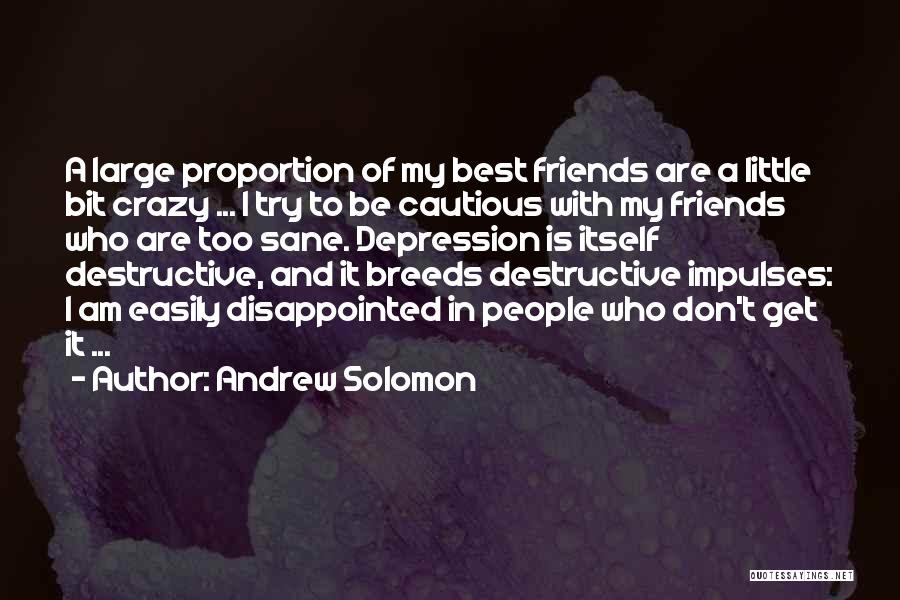 Be Crazy With Friends Quotes By Andrew Solomon
