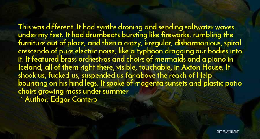 Beach And Summer Quotes By Edgar Cantero