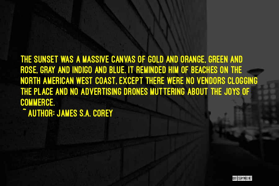 Beach And Sunset Quotes By James S.A. Corey