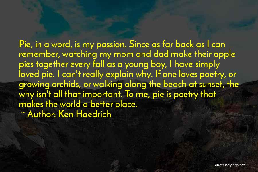 Beach And Sunset Quotes By Ken Haedrich