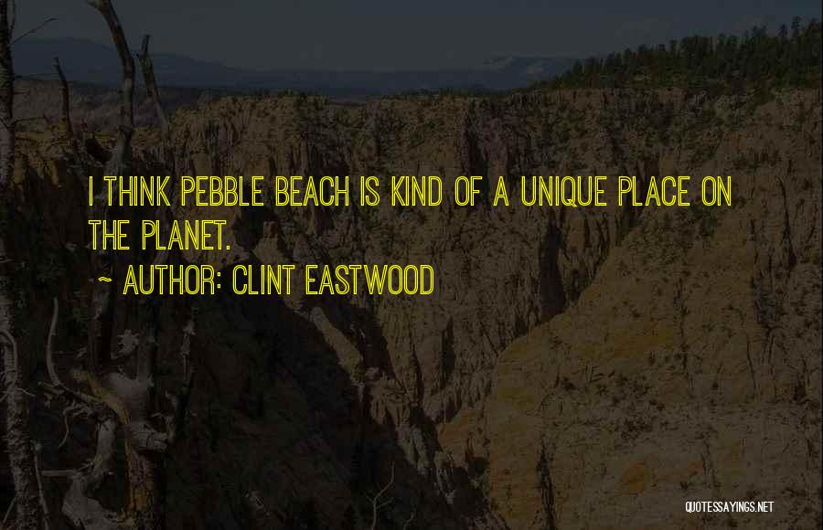 Beach Pebble Quotes By Clint Eastwood