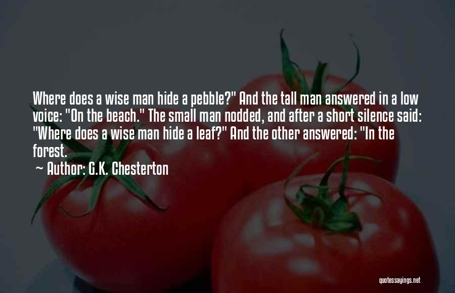 Beach Pebble Quotes By G.K. Chesterton