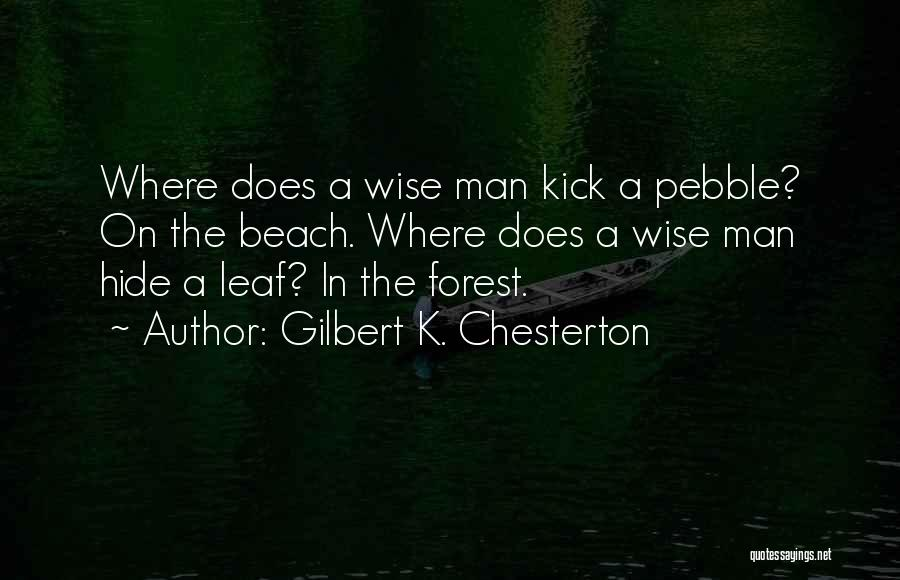 Beach Pebble Quotes By Gilbert K. Chesterton