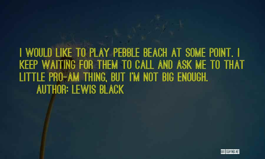 Beach Pebble Quotes By Lewis Black