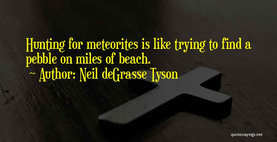 Beach Pebble Quotes By Neil DeGrasse Tyson