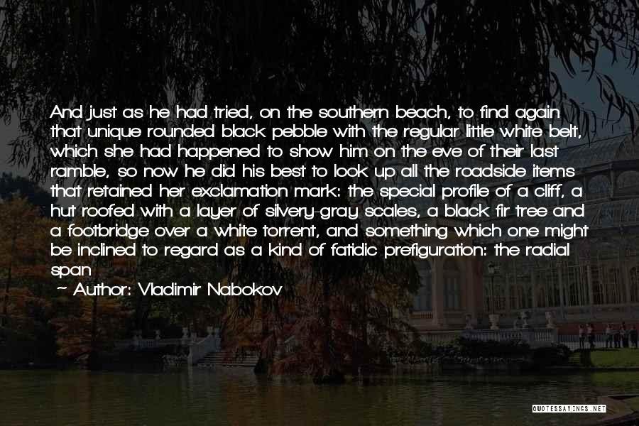 Beach Pebble Quotes By Vladimir Nabokov