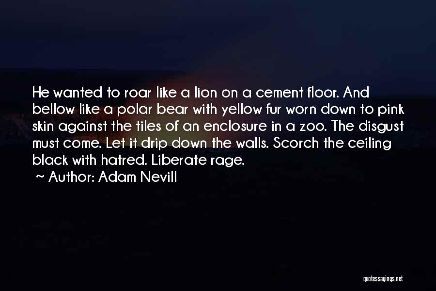 Bear Quotes By Adam Nevill