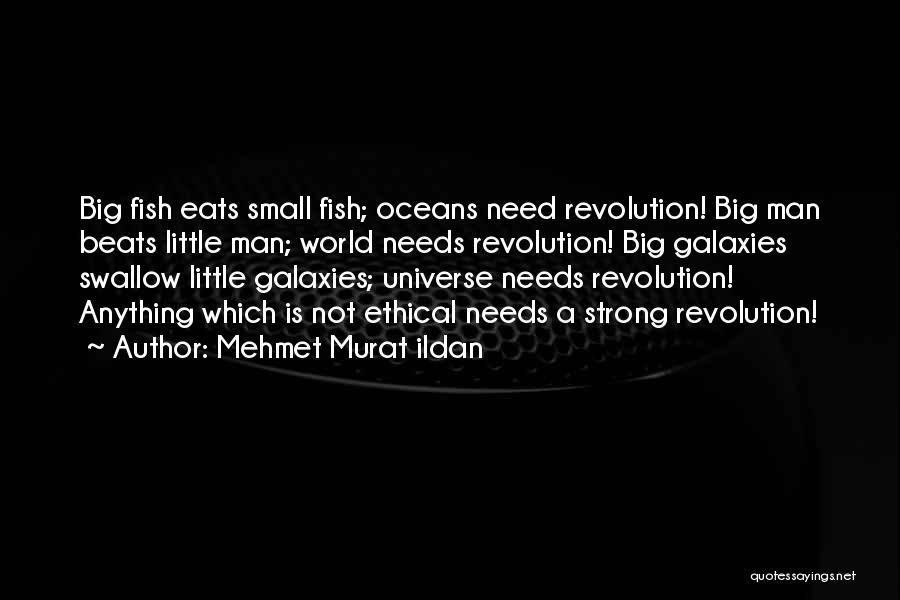 Beats Quotes By Mehmet Murat Ildan