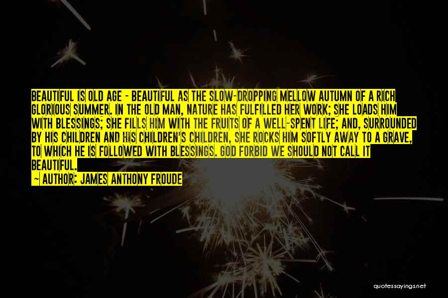 Beautiful Life Quotes By James Anthony Froude